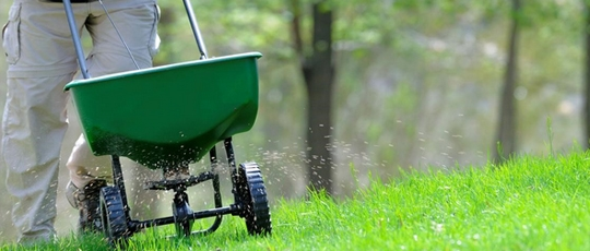 Gardening tips for easier maintenance greener grass of for Gardening 101 australia