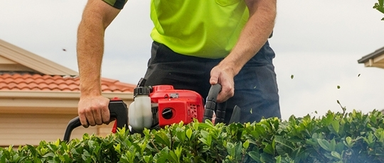 Foxmowingqld provides basic lawn mowing to a complete for Basic garden maintenance
